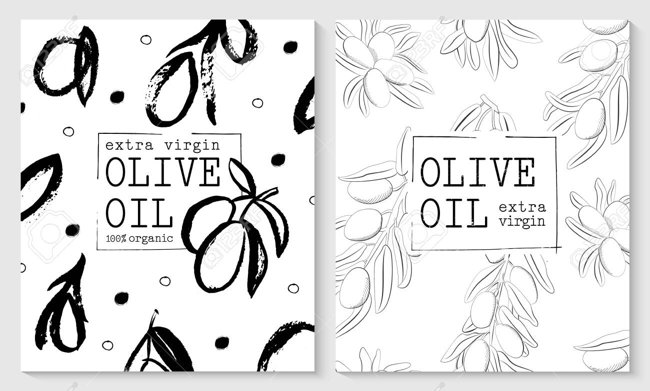 Vector packaging design elements and templates for olive oil labels and bottles - 143733093