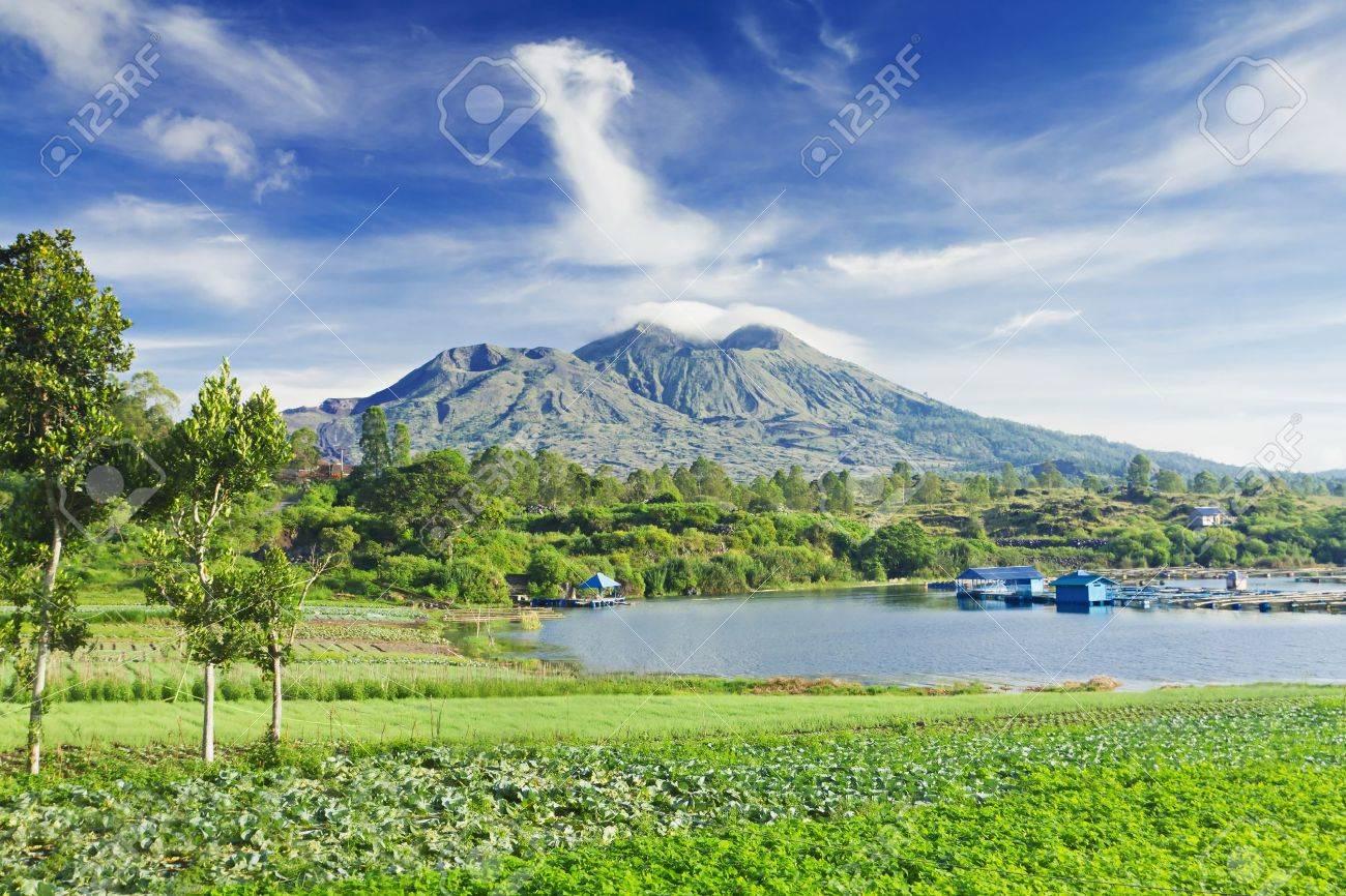 Landscape of Batur volcano on Bali island, Indonesia - 10085744