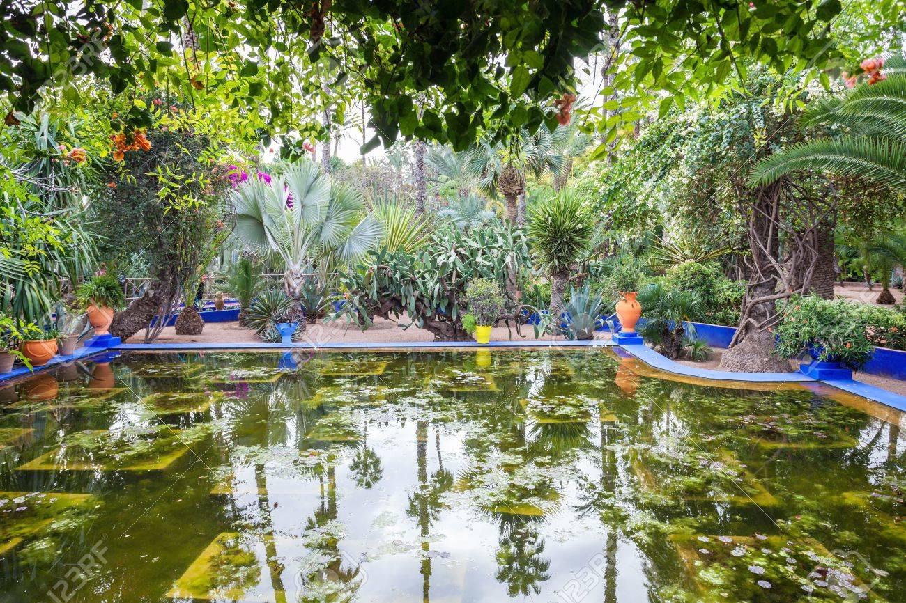 Marrakech Marruecos Febrero 22 De 2016 El Jardin Majorelle Es Un Jardin Botanico Y Jardin Del Paisaje Del Artista En Marrakech Marruecos