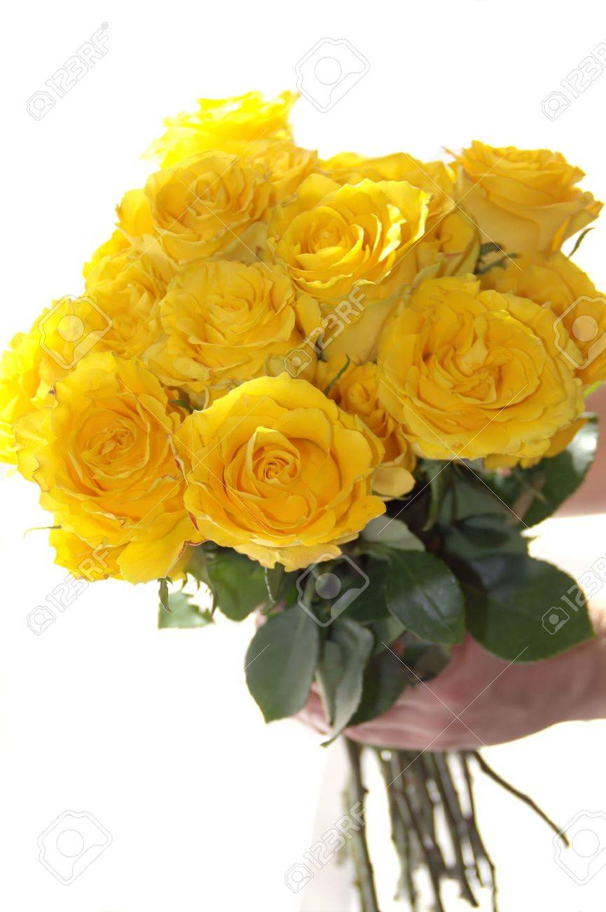 Yellow rose flower bouquet in the hand stock photo picture and stock photo yellow rose flower bouquet in the hand mightylinksfo