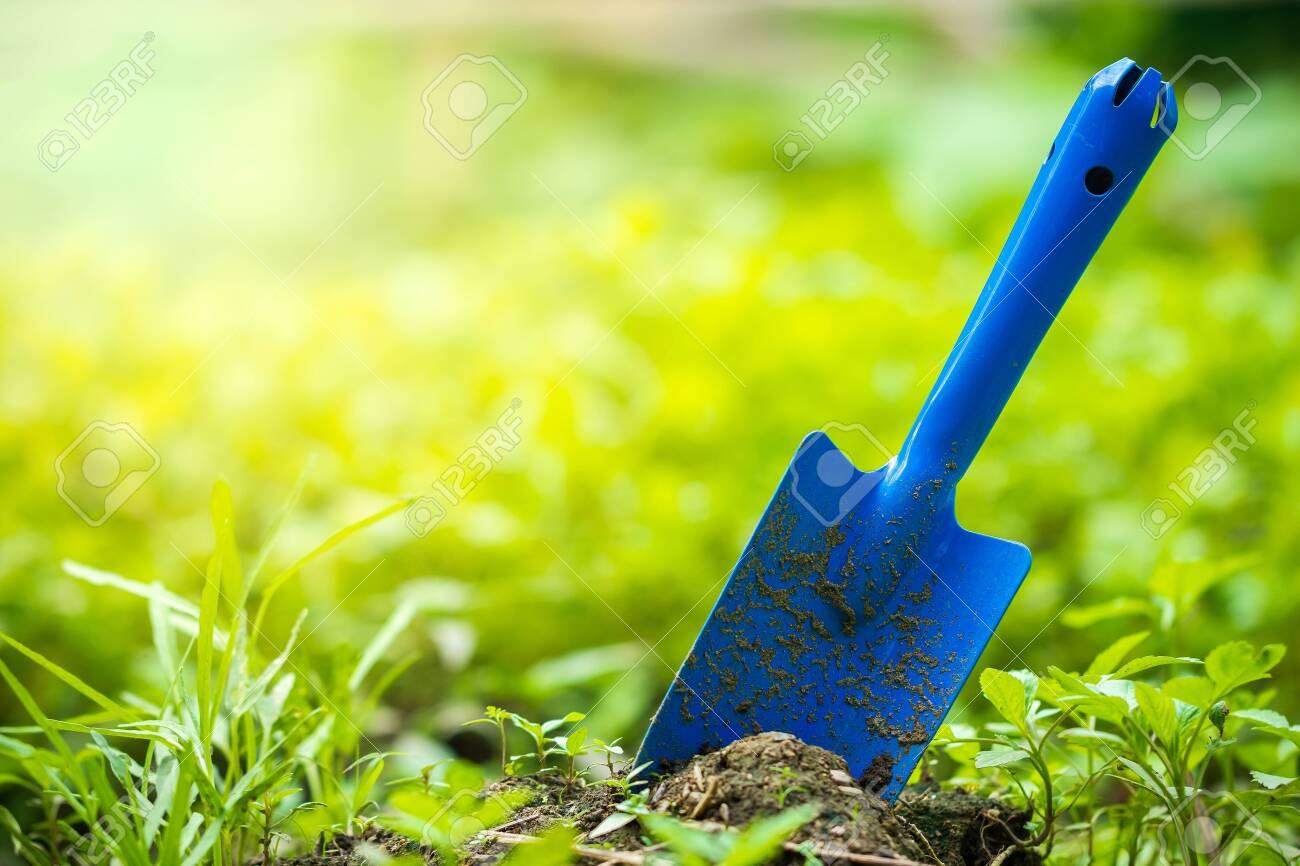 Yard Garden Tools And Vegetable Garden Trowel Stuck In The Ground