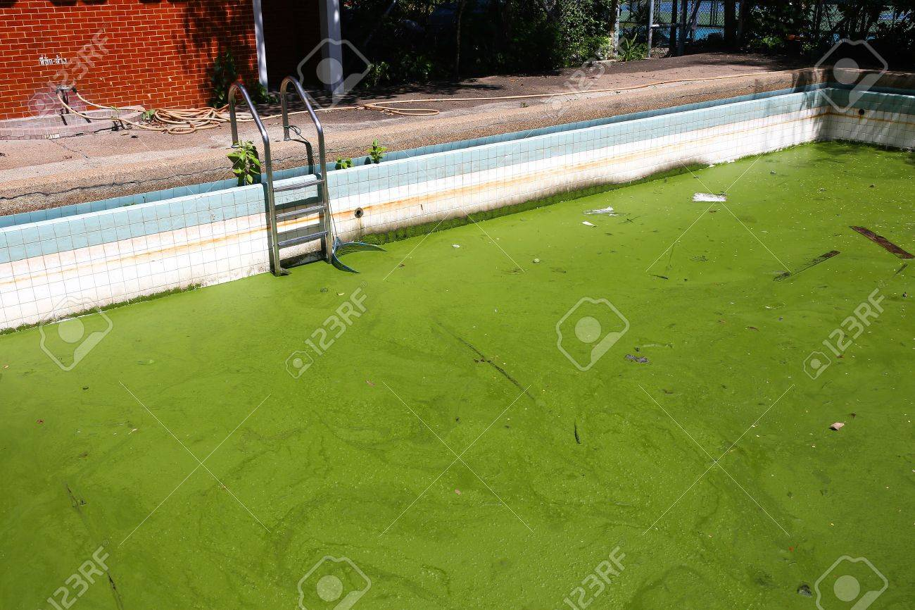 Dirty water in old swimming pool
