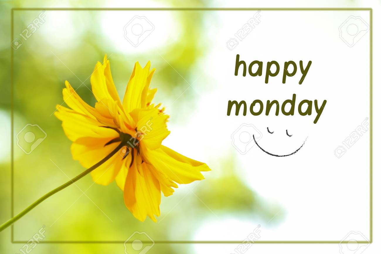 Abstract Blurred Yellow Flower With The Text Happy Mondaycan