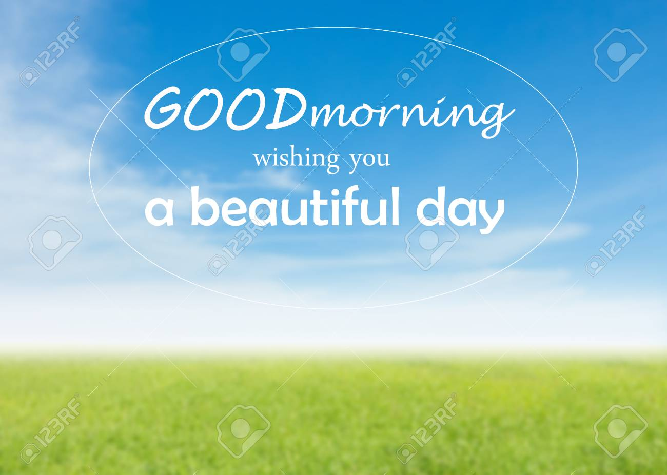 Good Morning Wishing You A Beautiful Day Quote In Green Grass