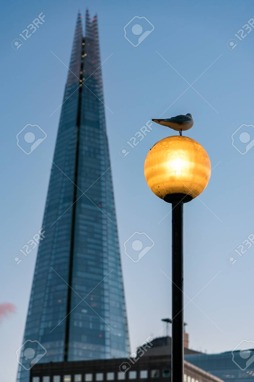 Pigeon Sitting On A Lamp Post Facing The Shard Of London Stock