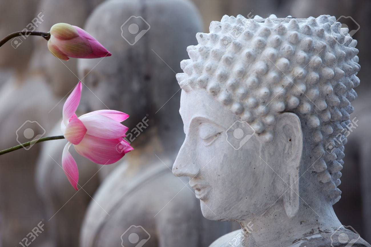 Lotus Flower With Buddha Image Stock Photo Picture And Royalty Free