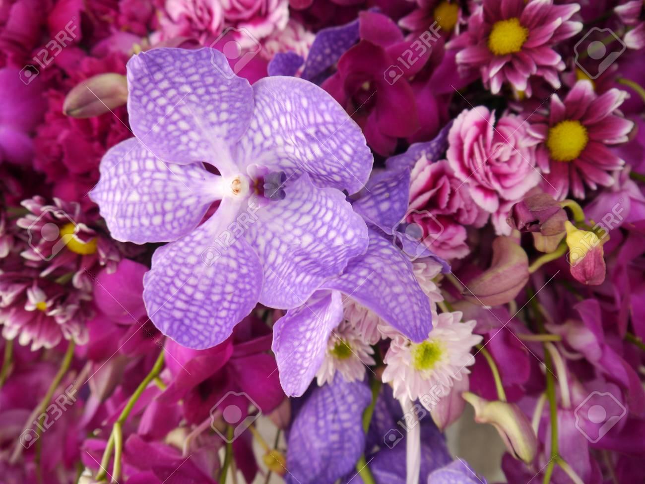 Pink purple flower bouquet orhid stock photo picture and royalty pink purple flower bouquet orhid stock photo 58397102 mightylinksfo