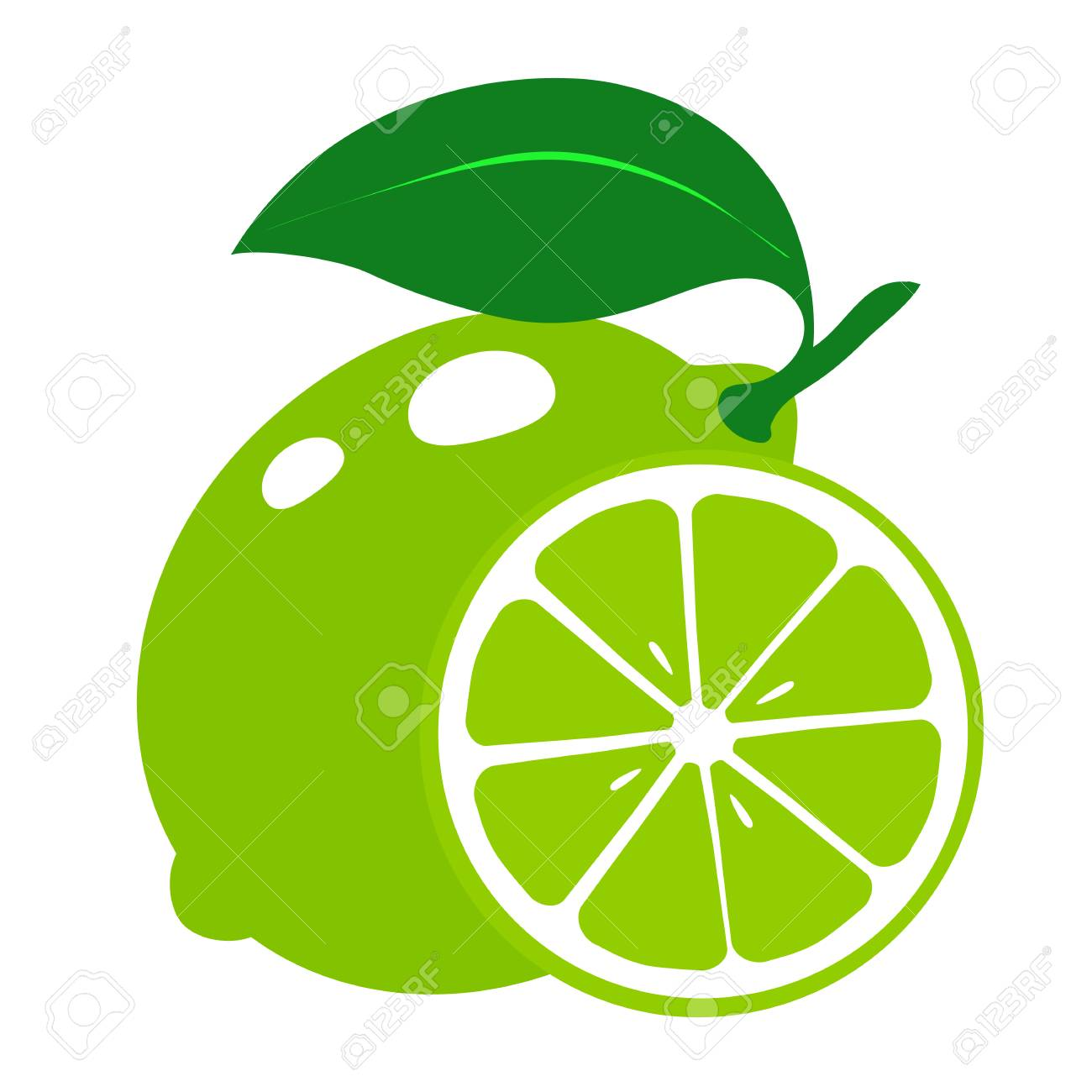 Fresh slices of lime isolated on white background. Vector illustration. - 104648748