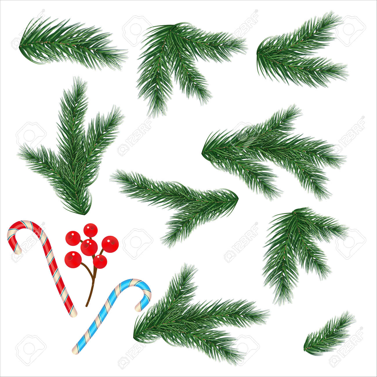 Christmas tree branches. Set of tree, fir, pine. Isolated on a white background. Vector - 160775767