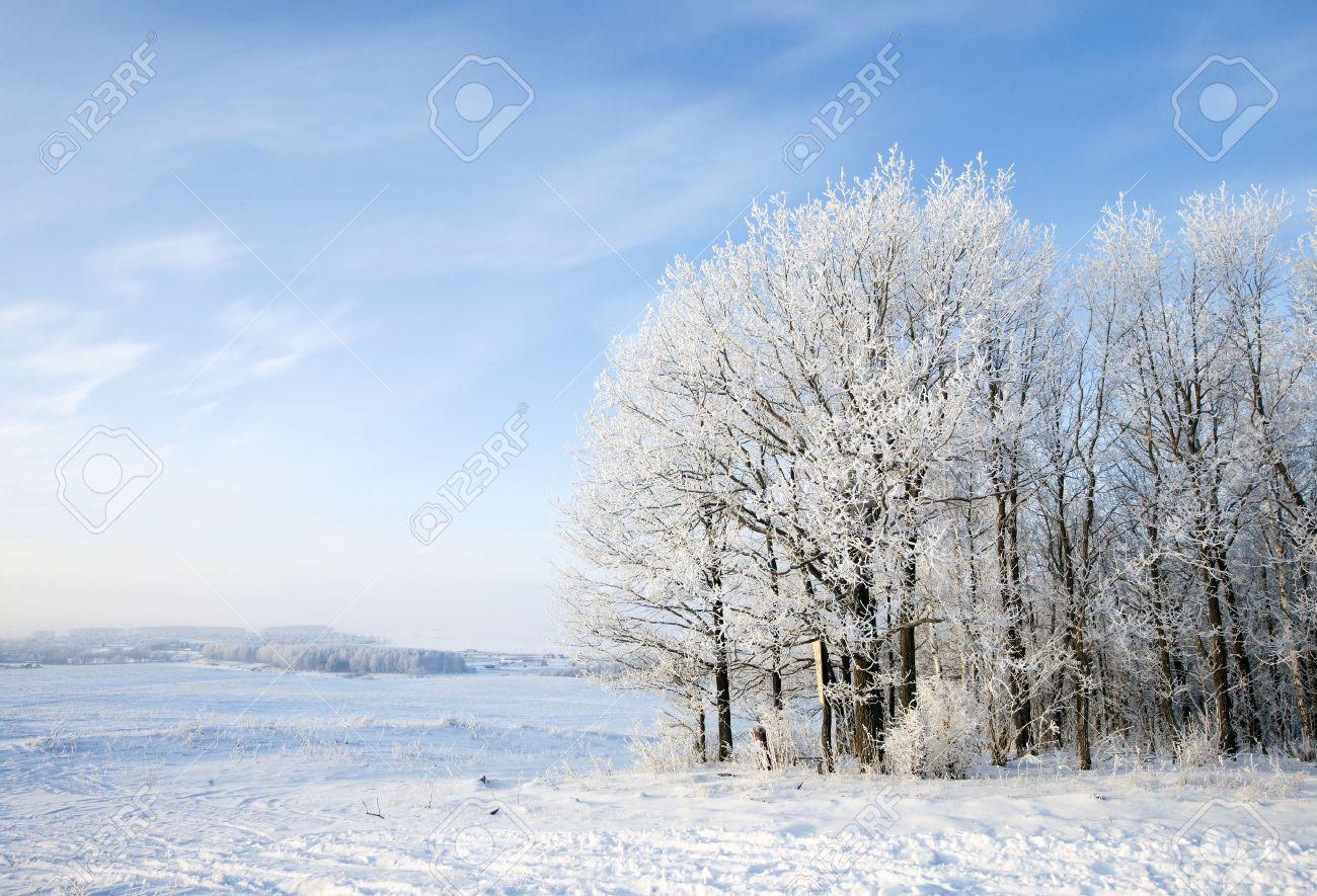 Walk through the beautiful winter scene in Russia - 17656461