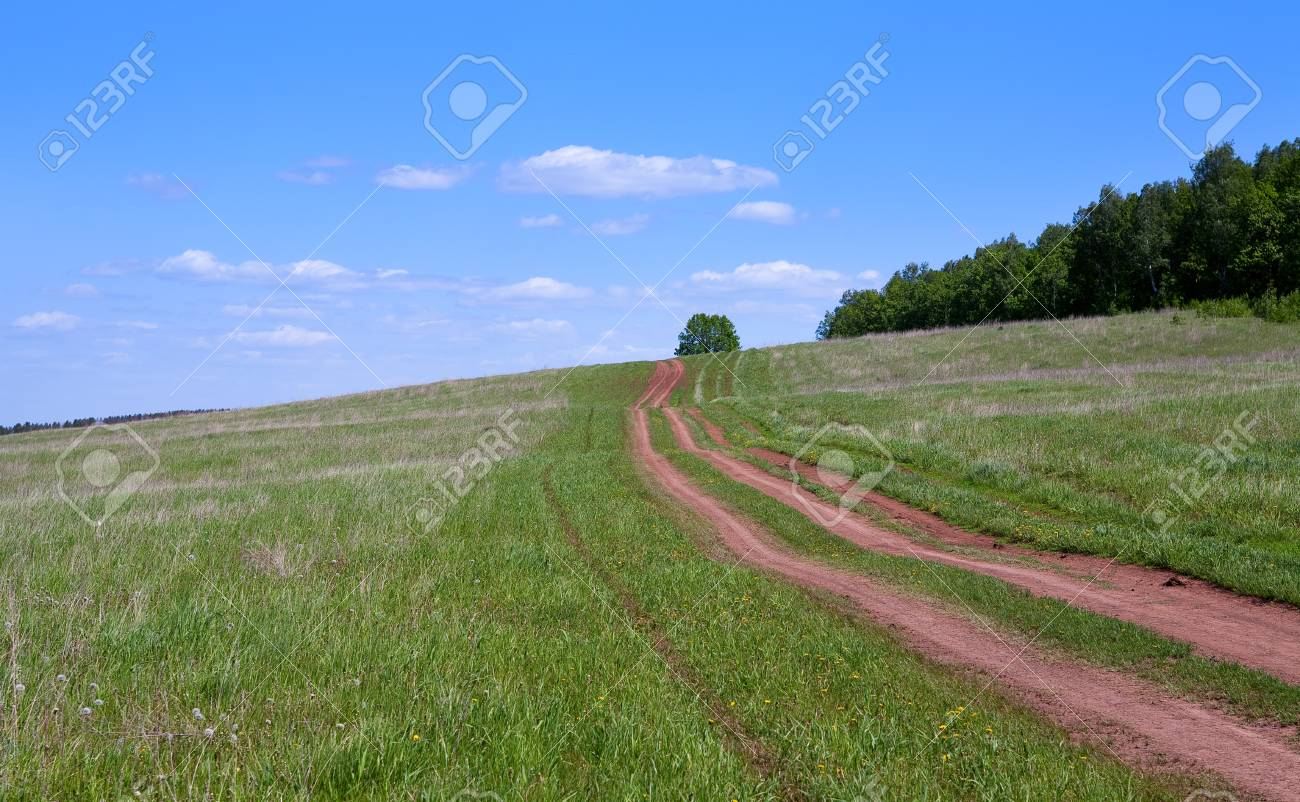 spring landscape of rural dirt road leading to the horizon through a meadow near the forest on a sunny day Stock Photo - 25565616