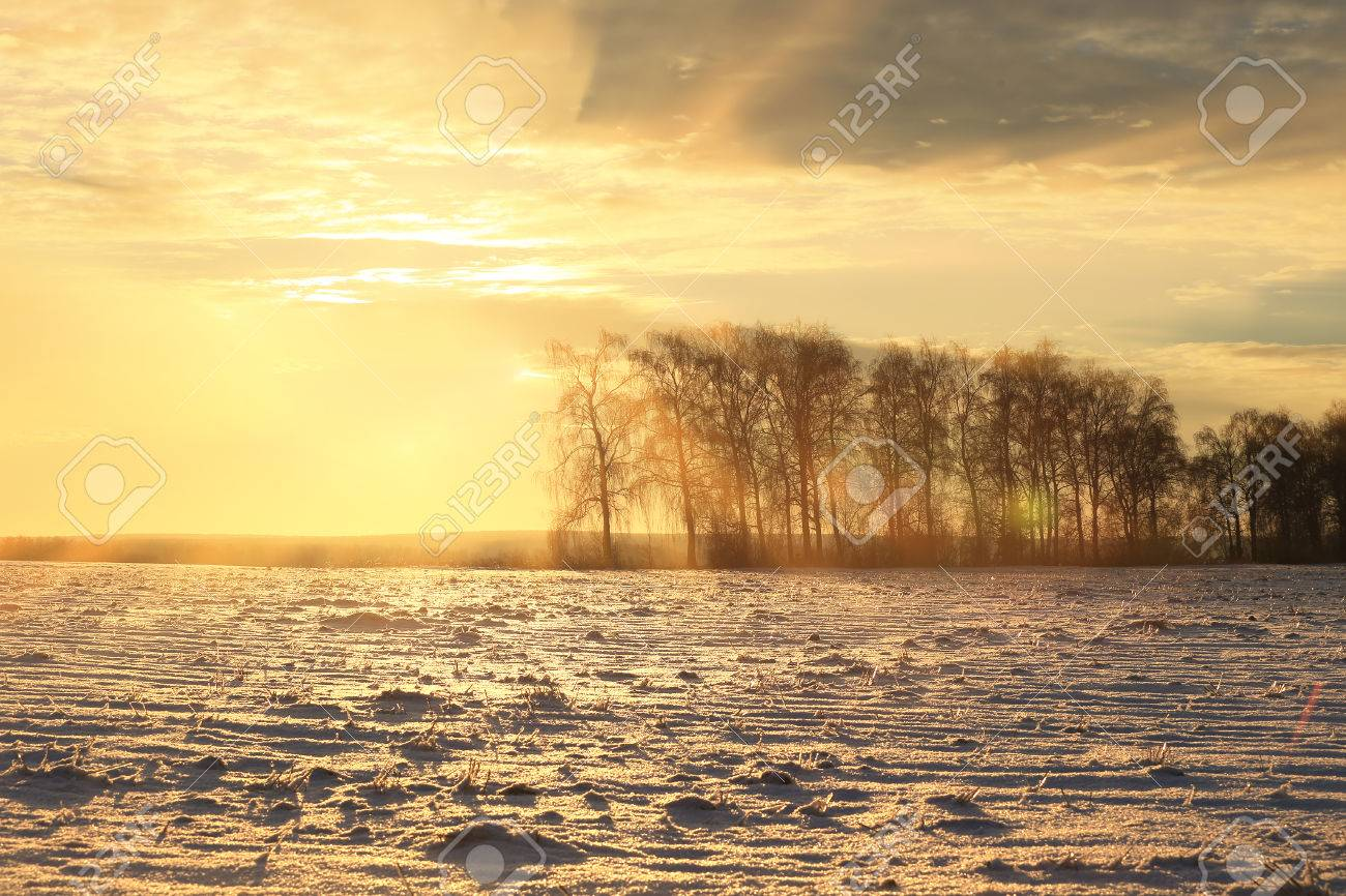 winter landscape colorful sunrise over the snow-covered field - 71390256