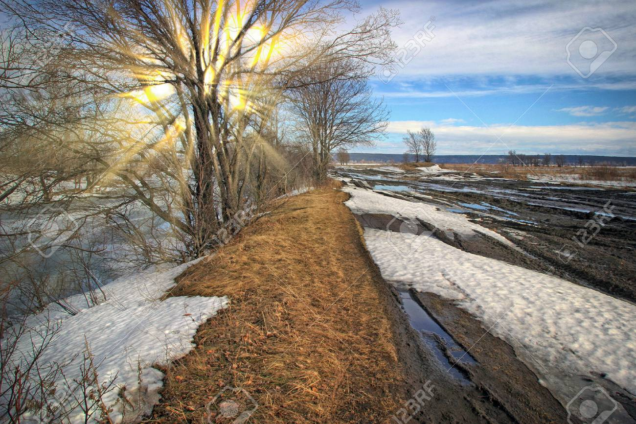Scenic landscape in early spring in the field and blurred dirt road on a sunny day - 87683448
