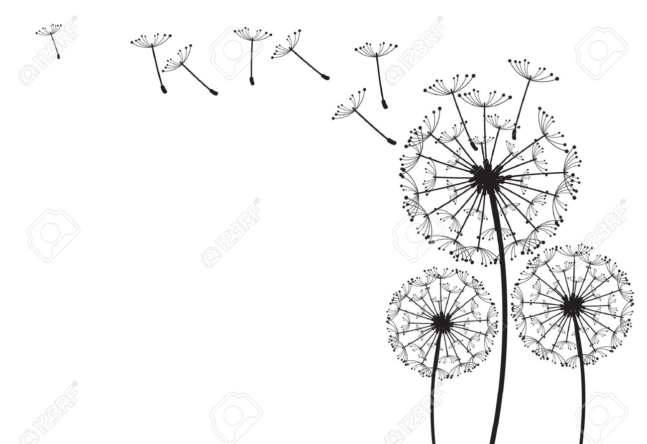 The dandelion on a wind loses the integrity - 14753569