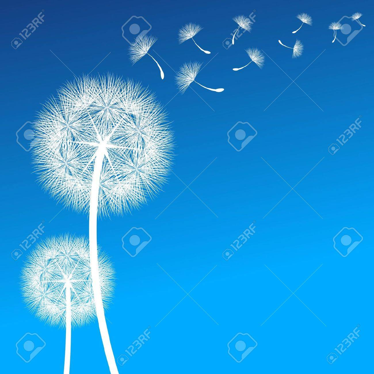 vector dandelion on a wind loses the integrity - 22238213