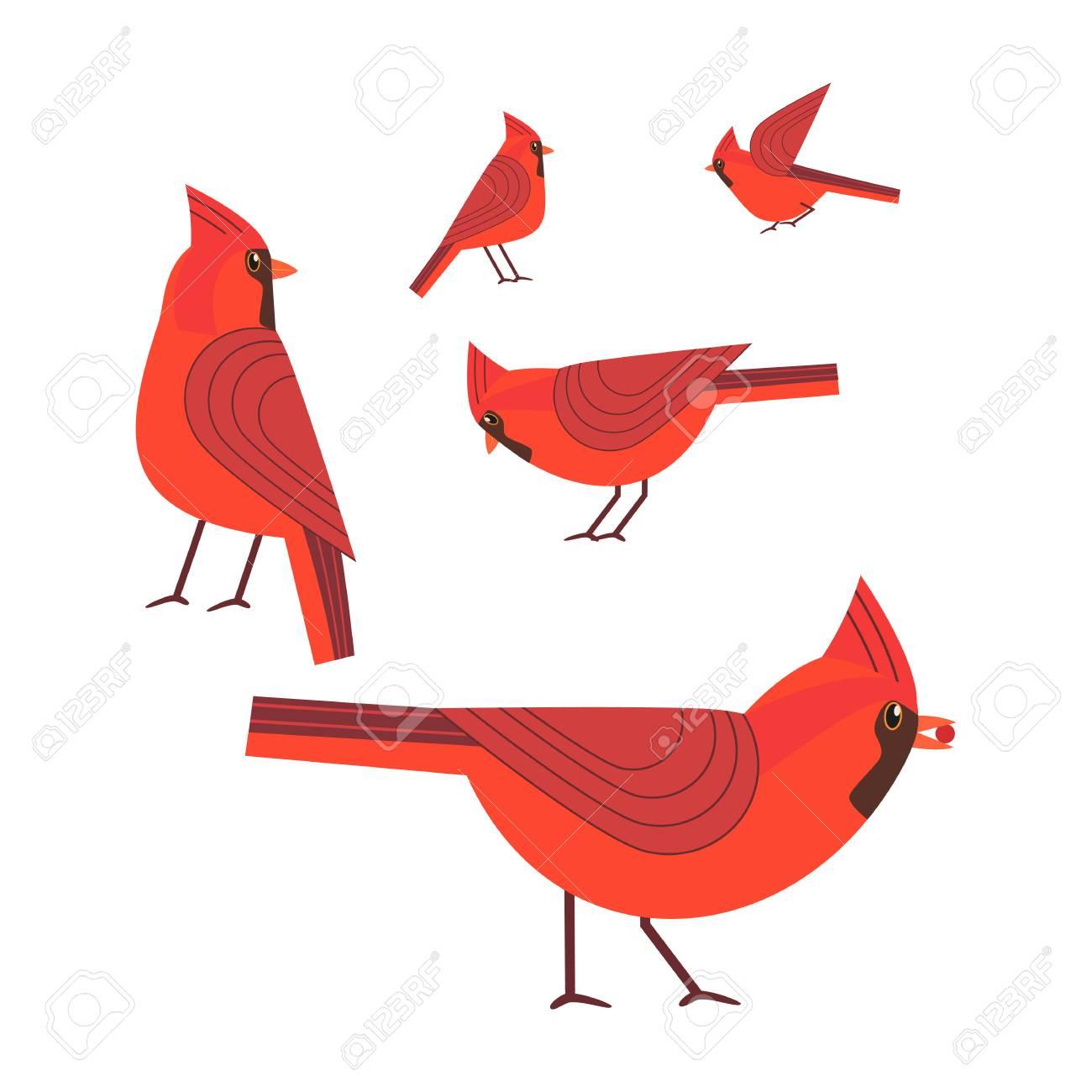 Lujoso Enmarcadas Imágenes Del Pájaro Galería - Ideas Personalizadas ...