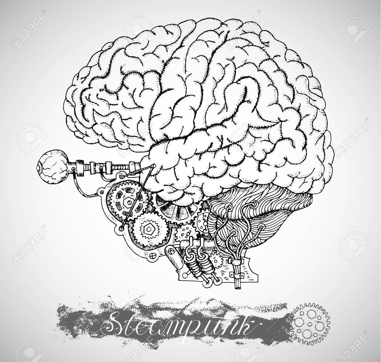 Cerebro Anatomía Humana Y Del Ojo Con El Mecanismo De La Vendimia En ...