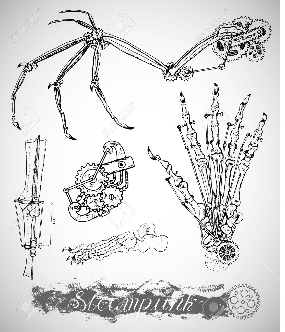 Wunderbar Bein Und Knöchelknochen Zeitgenössisch - Anatomie Ideen ...