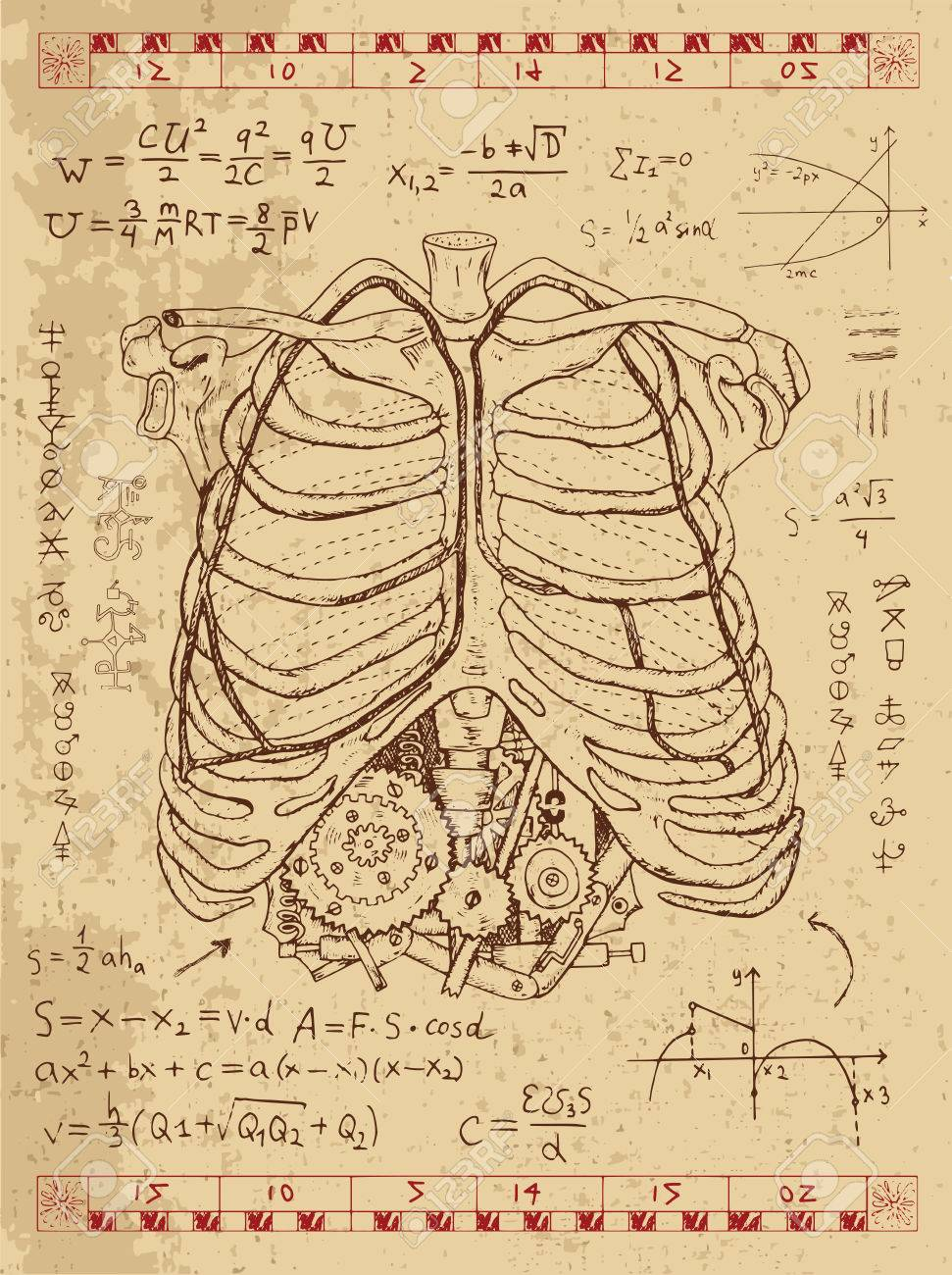 Graphic set with human anatomy chest, math formulas and steam..