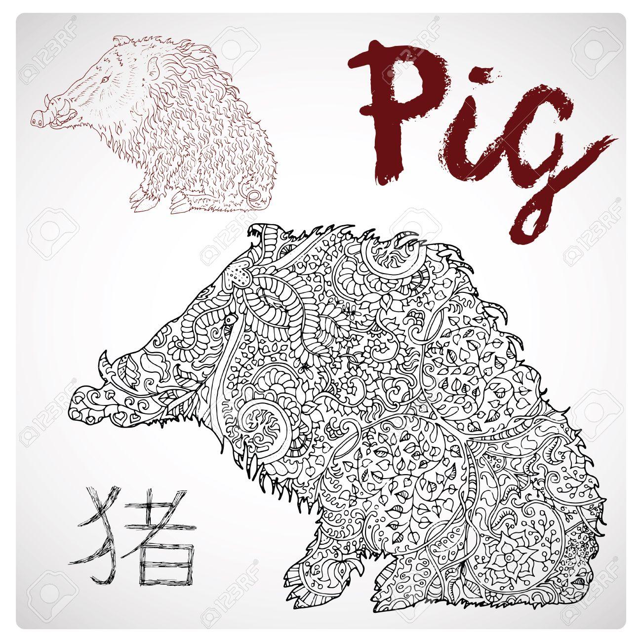 Dibujado A Mano Ilustración De Cerdo O De Jabalí Con El Modelo Zen Y ...