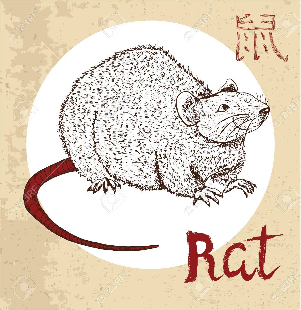 Chinese Zodiac Symbol Of Hand Drawn Rat Or Mouse With Lettering