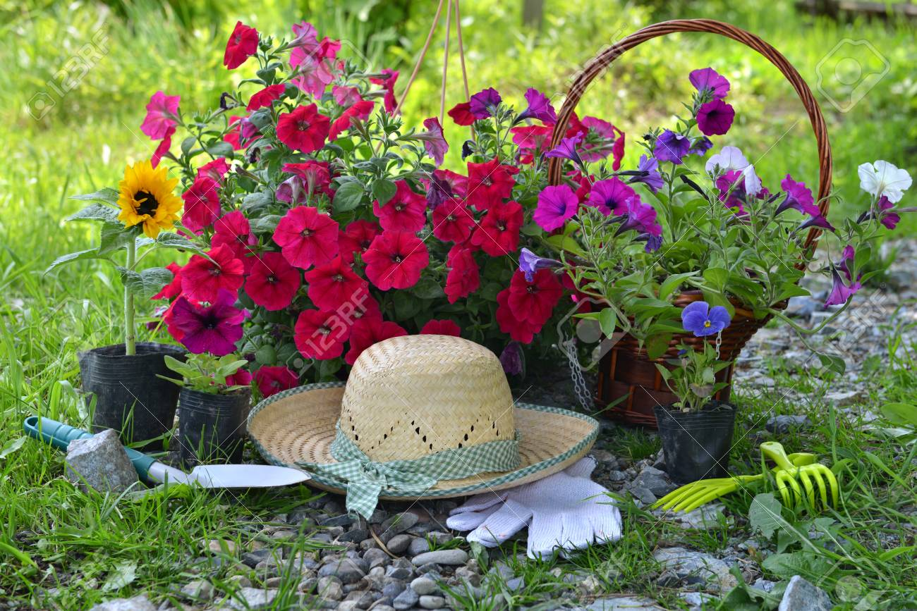 Beautiful Summer Background With Flowers Garden Tools And Straw