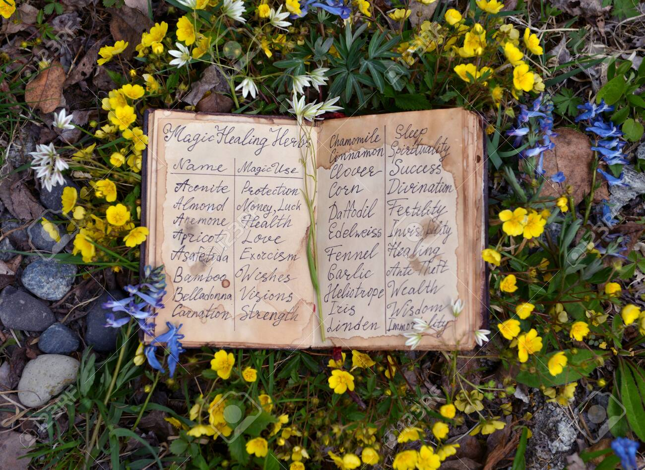 Open witch diary book with healing herbs and flowers list  Wicca,