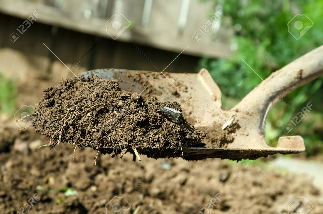 a close up of shovel with some dirt on it Stock Photo - 14462833
