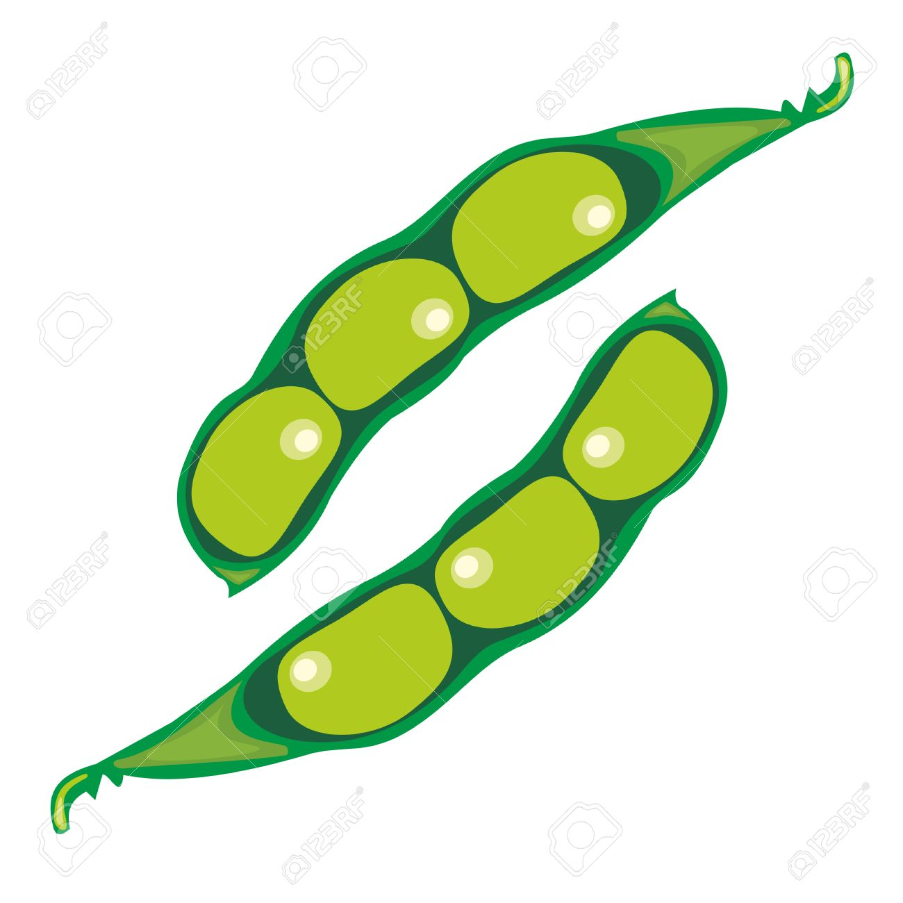 soya beans royalty free cliparts vectors and stock illustration rh 123rf com  soybean oil clipart