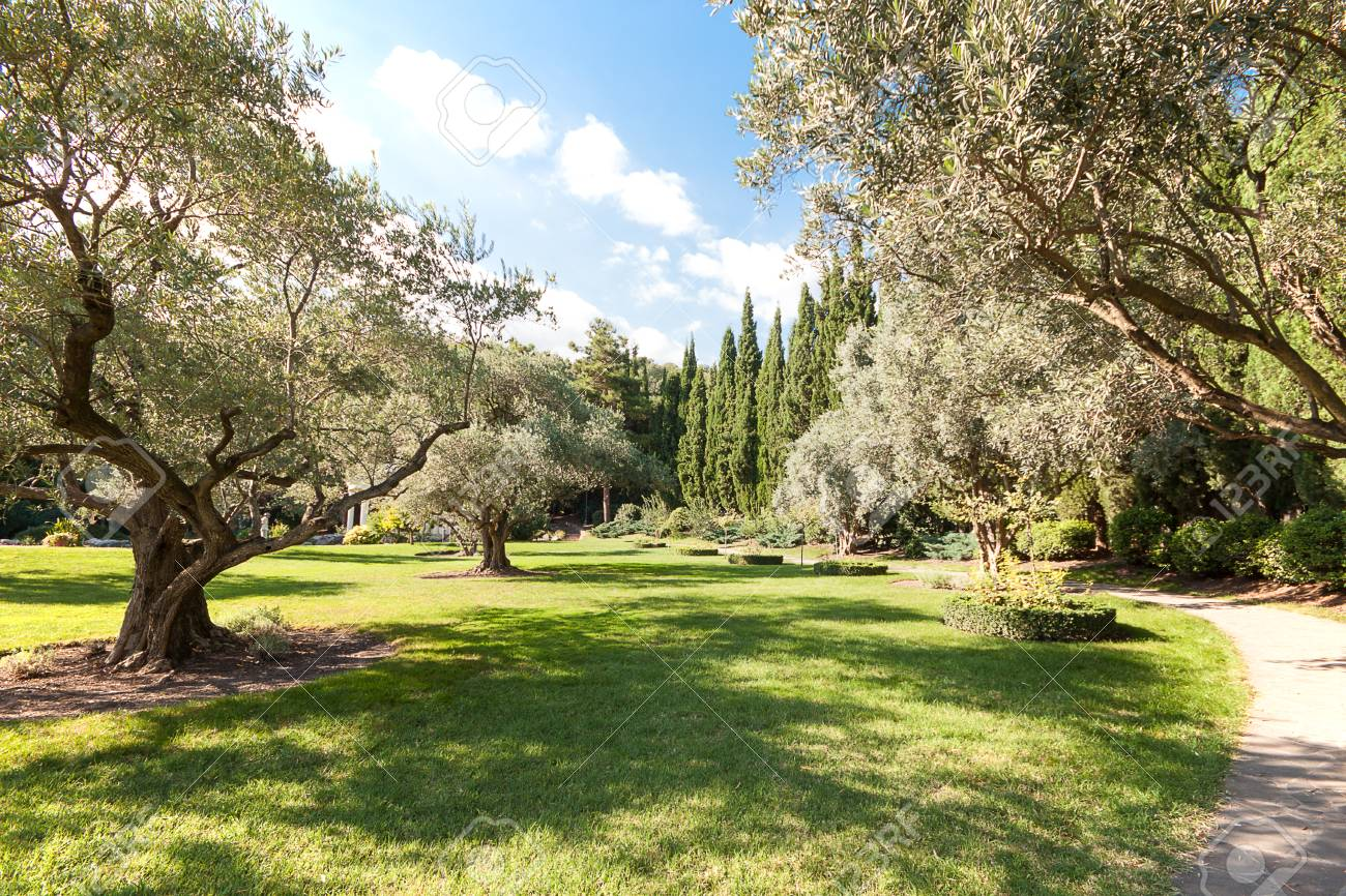 Beautiful Park With Path In Suumer Day Blue Sky Garden Design Stock Photo Picture And Royalty Free Image Image 111336378