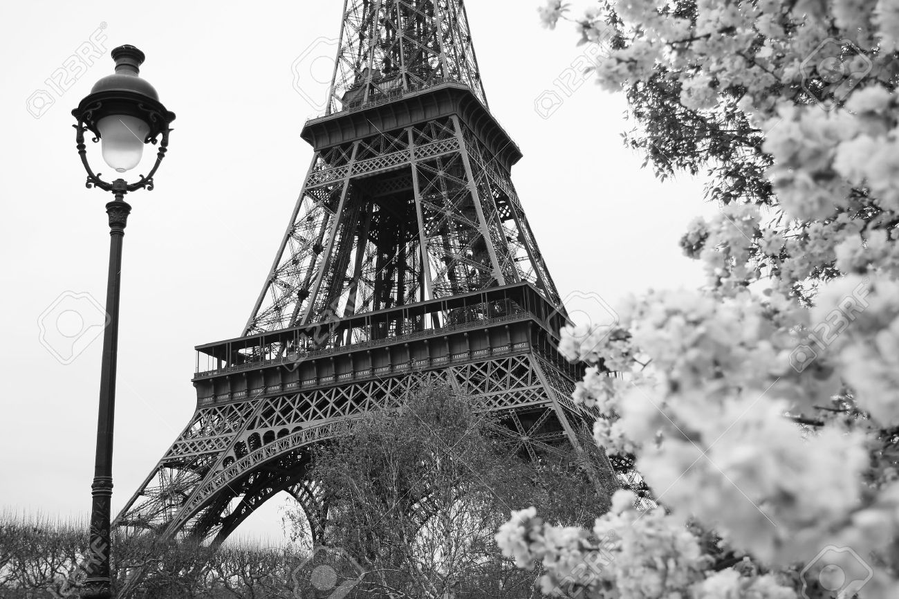 Eiffel tower in black and white style paris france stock photo 12159167