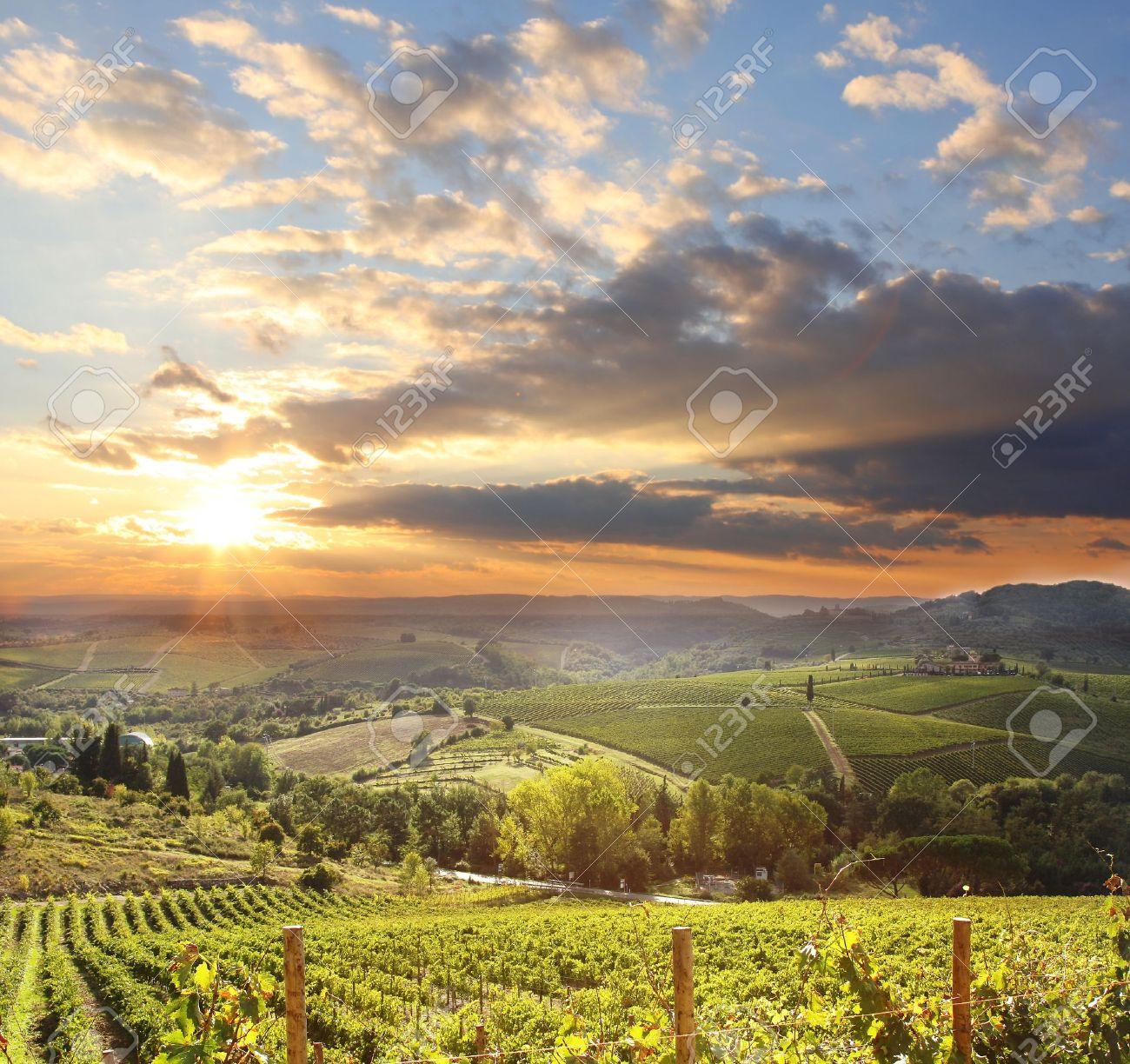 Chianti vineyard landscape in Tuscany, Italy - 15541207