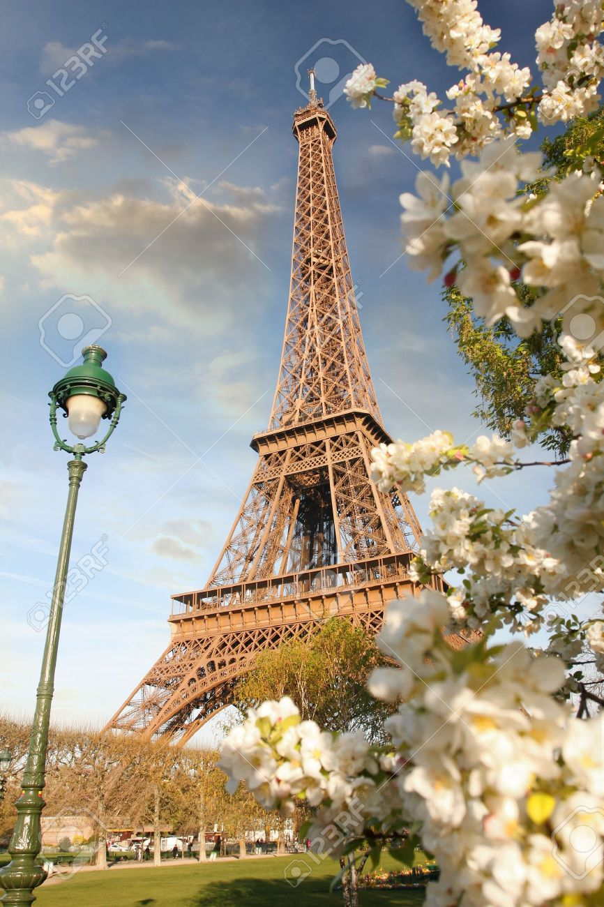 Eiffel Tower in spring time, Paris, France - 15549642