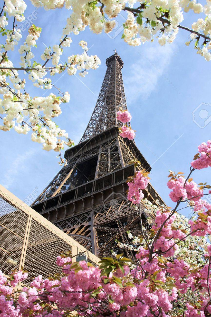 Eiffel Tower in spring time, Paris, France - 15549636