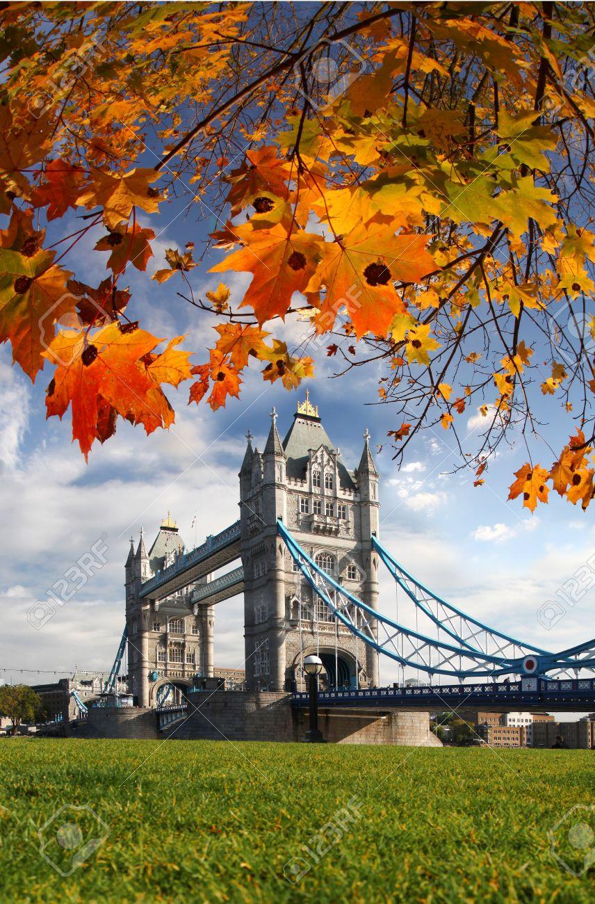 Famous Tower Bridge in Autumn, London, England - 16042892
