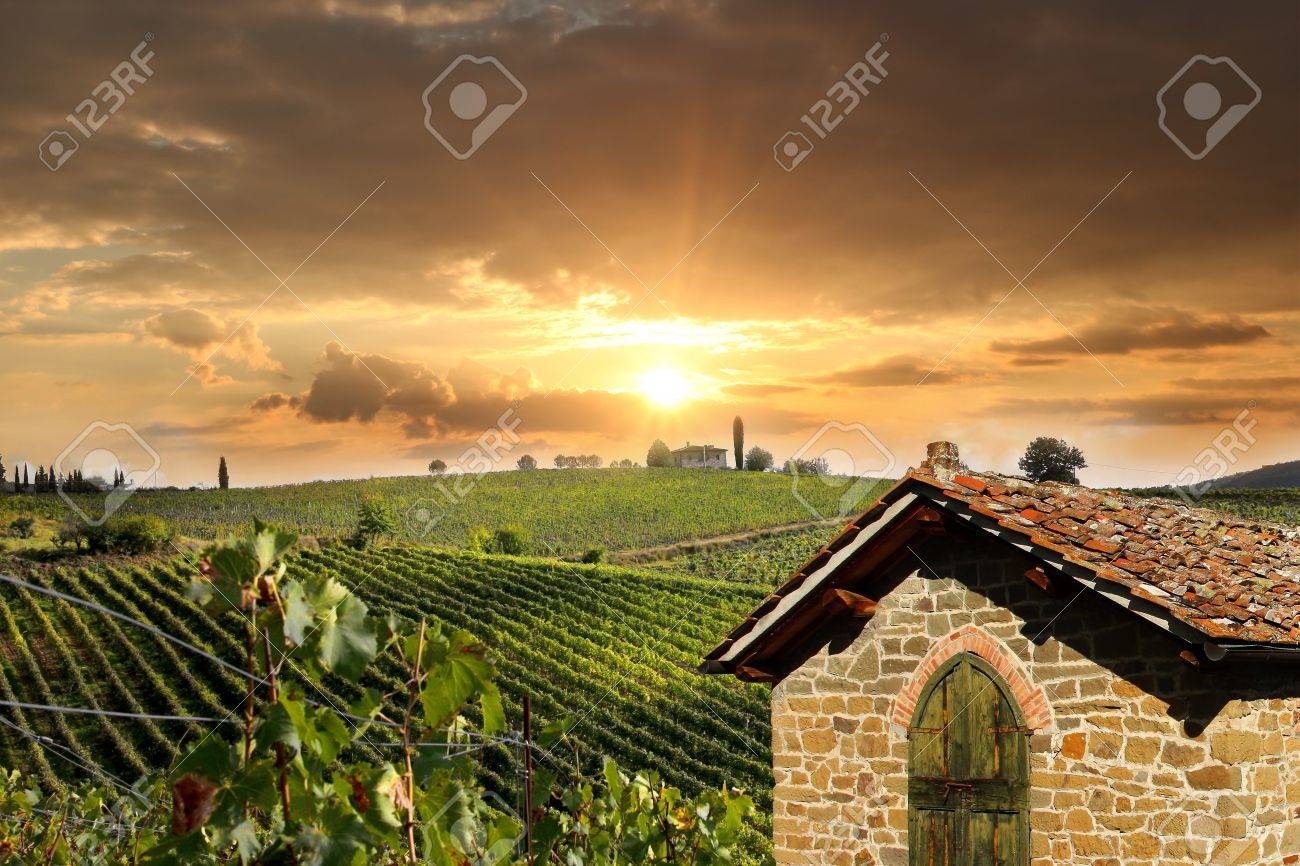 Chianti vineyard landscape in Tuscany, Italy Stock Photo - 17773362