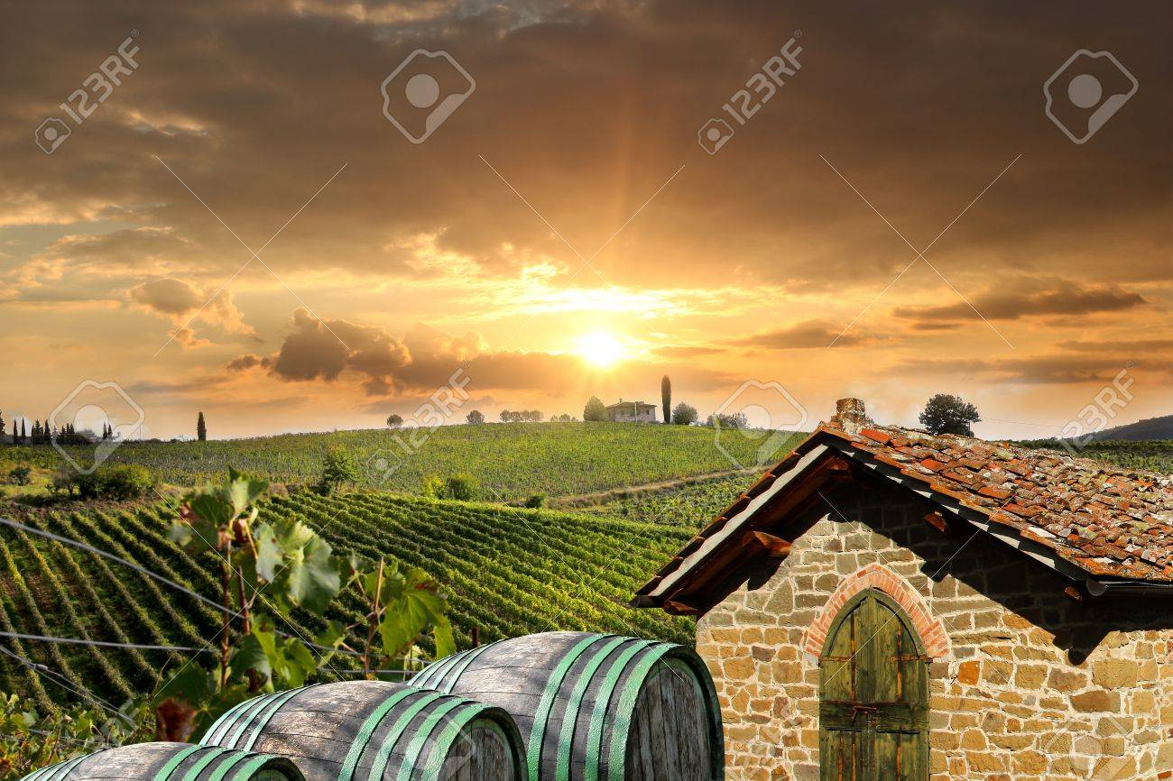 Chianti vineyard landscape in Tuscany, Italy - 17773369