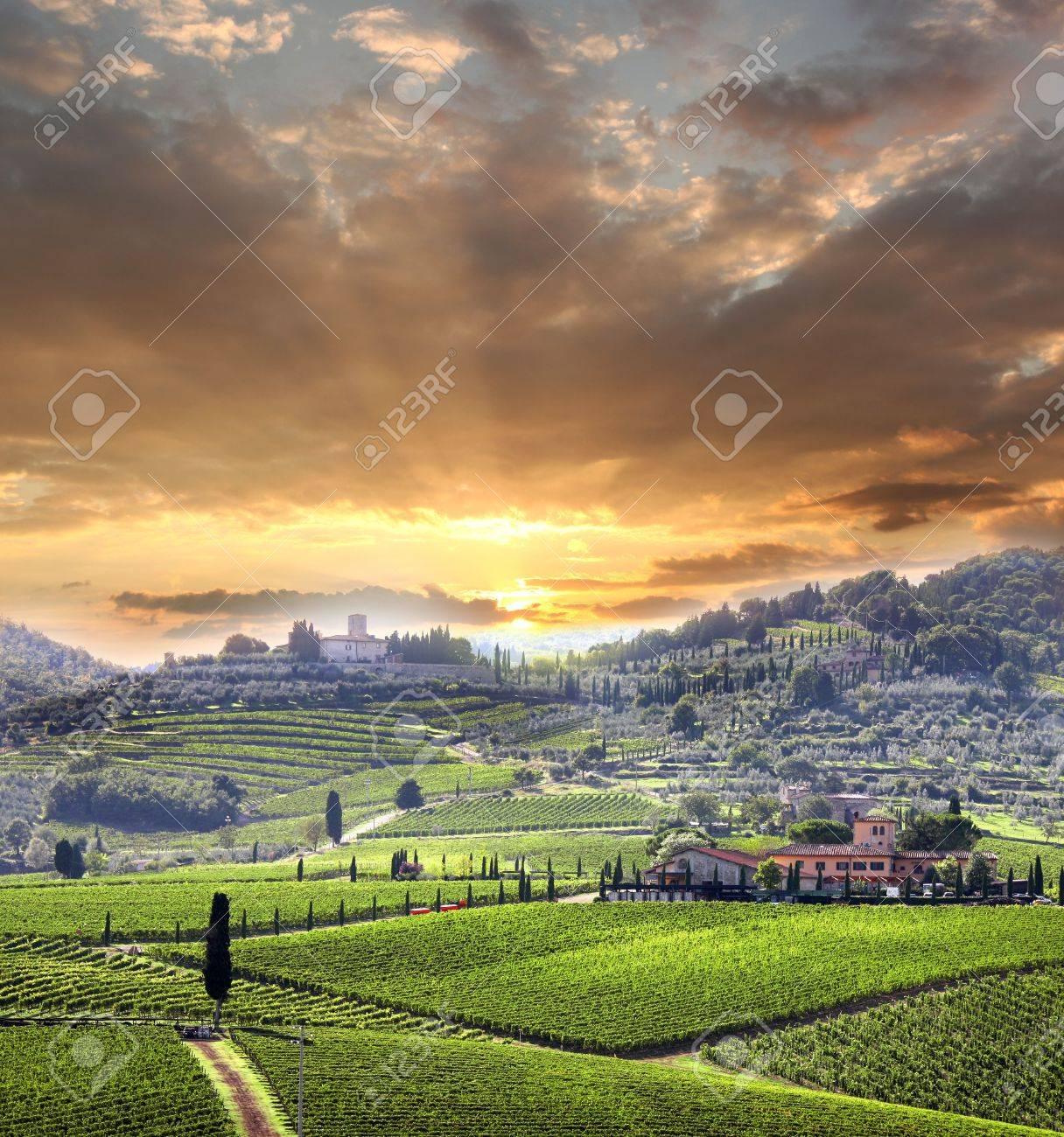 Chianti vineyard landscape in Tuscany, Italy - 17773403