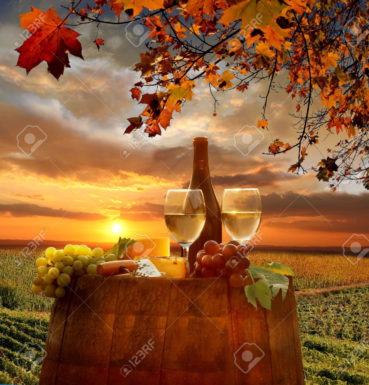 White wine with barrel on vineyard in Chianti, Tuscany, Italy - 21483116