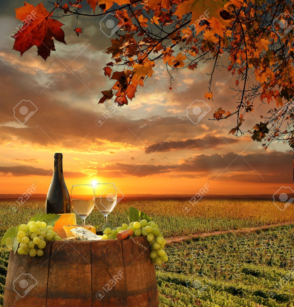 White wine with barrel on vineyard in Chianti, Tuscany, Italy - 21803764