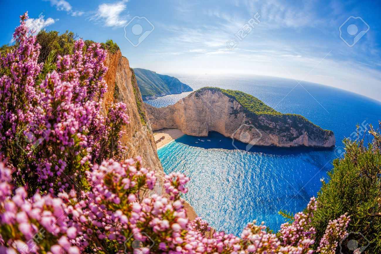 Navagio beach with shipwreck and flowers against sunset, Zakynthos island, Greece - 47613127