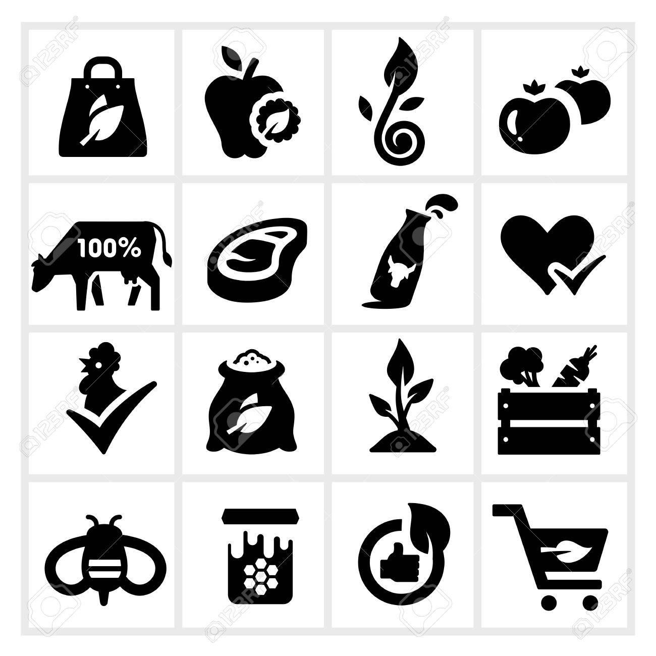 Organic Food Icons - 23863814