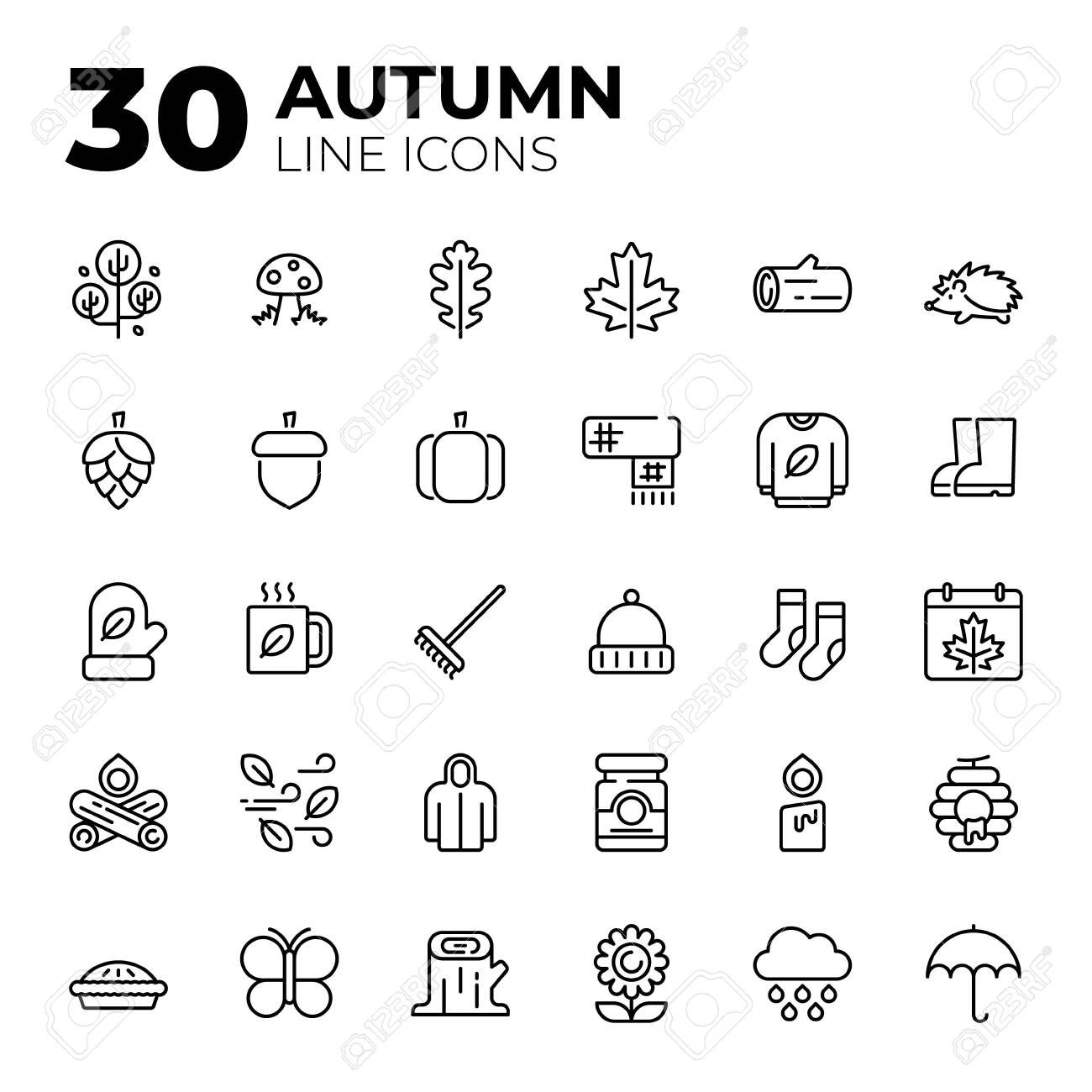 Set of Autumn related icons. - 153330363