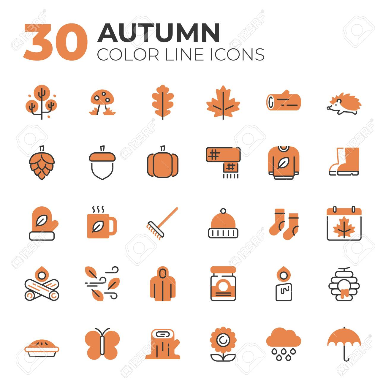 Set of Autumn related icons. - 153330365
