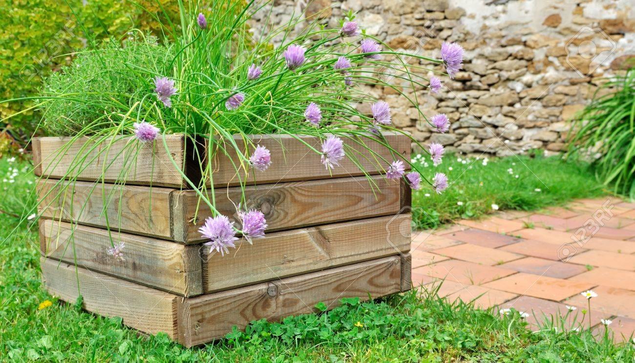Plantes Aromatiques En Jardinière jardinière de plantes aromatiques à la ciboulette fleur en pot en bois