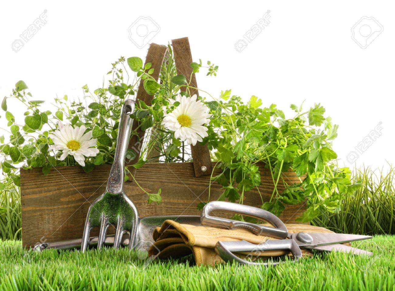 garden boots fresh herbs in wooden box with garden tools on grass