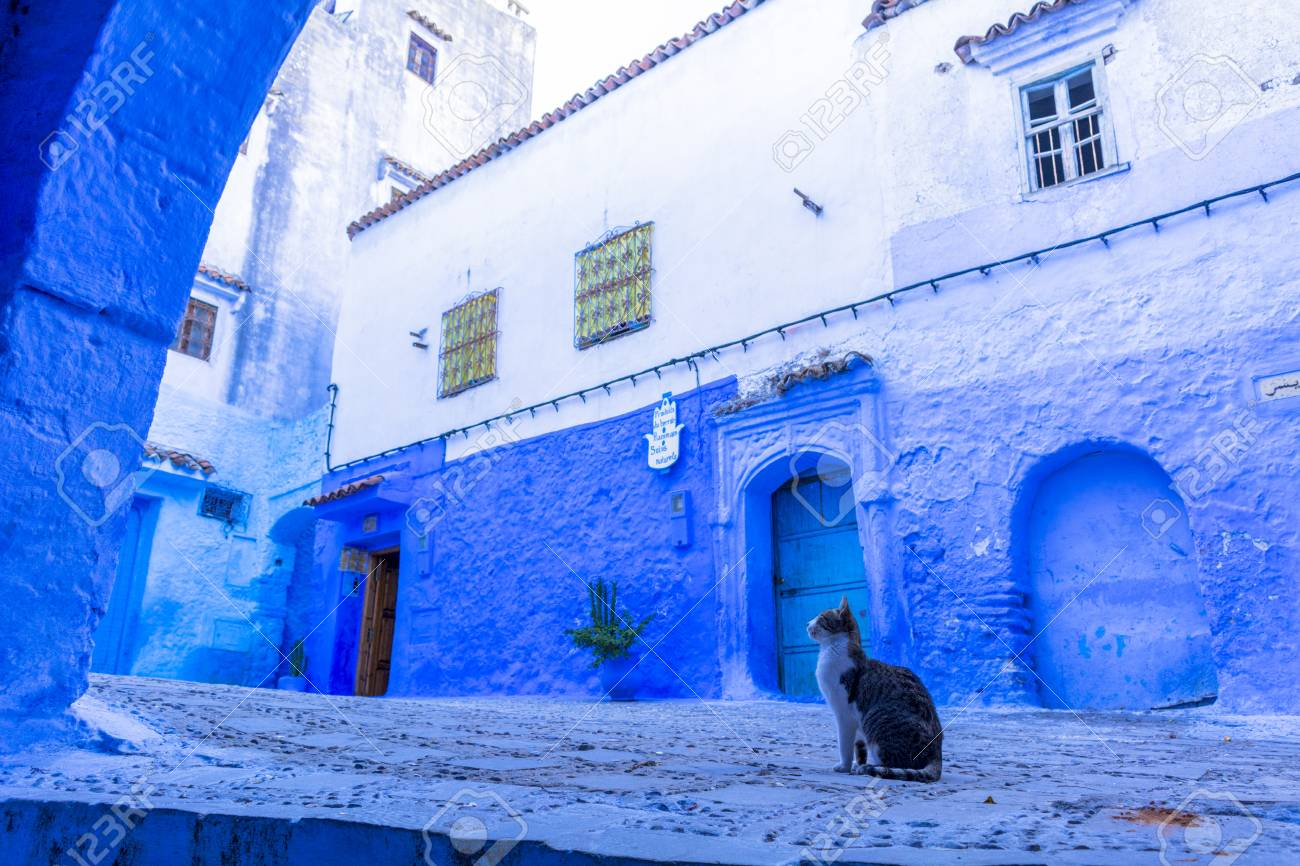 Blue city of Morocco, Chefchaouen - 111685331