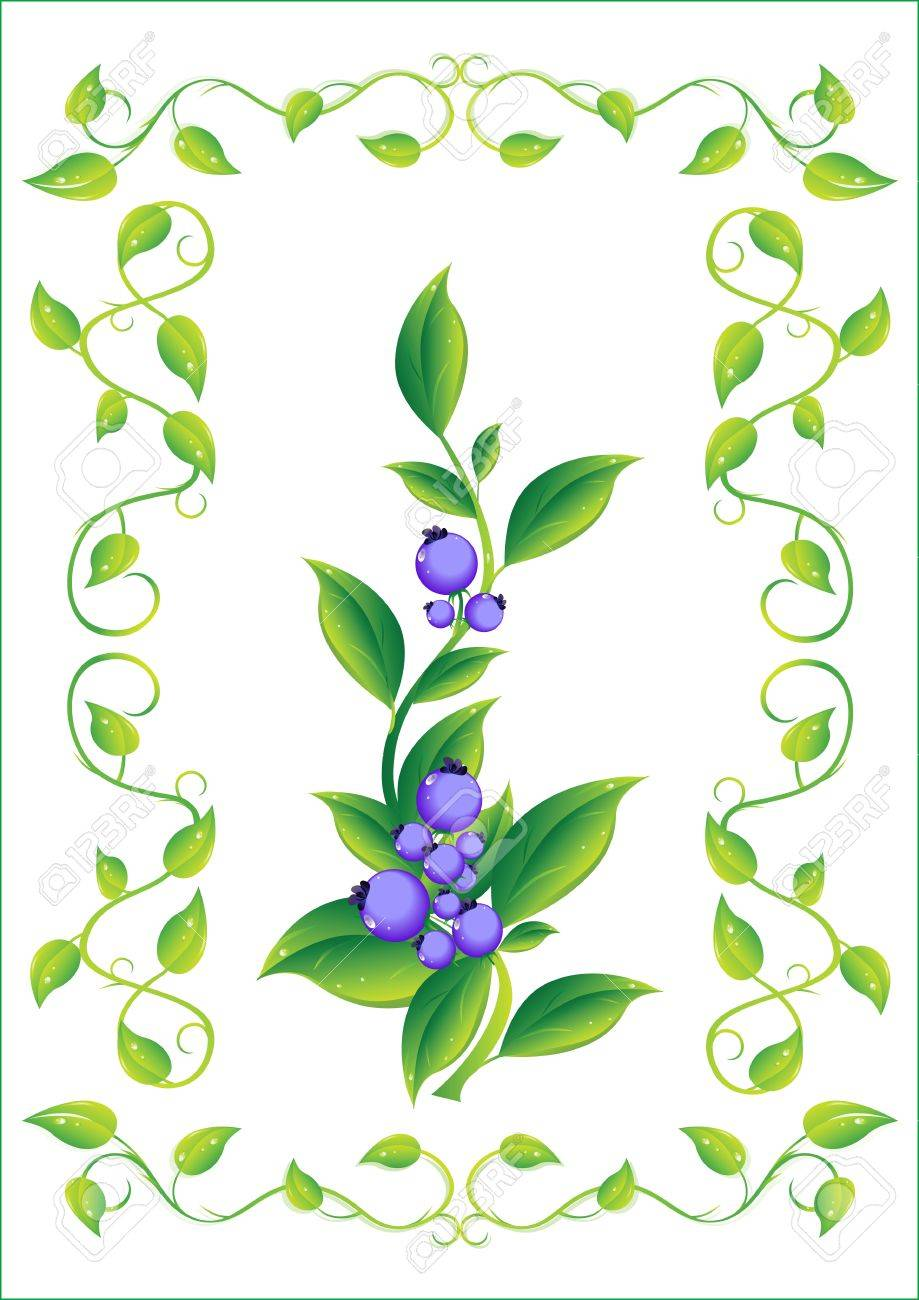 berry in the frame.Vector illustration - 5936968