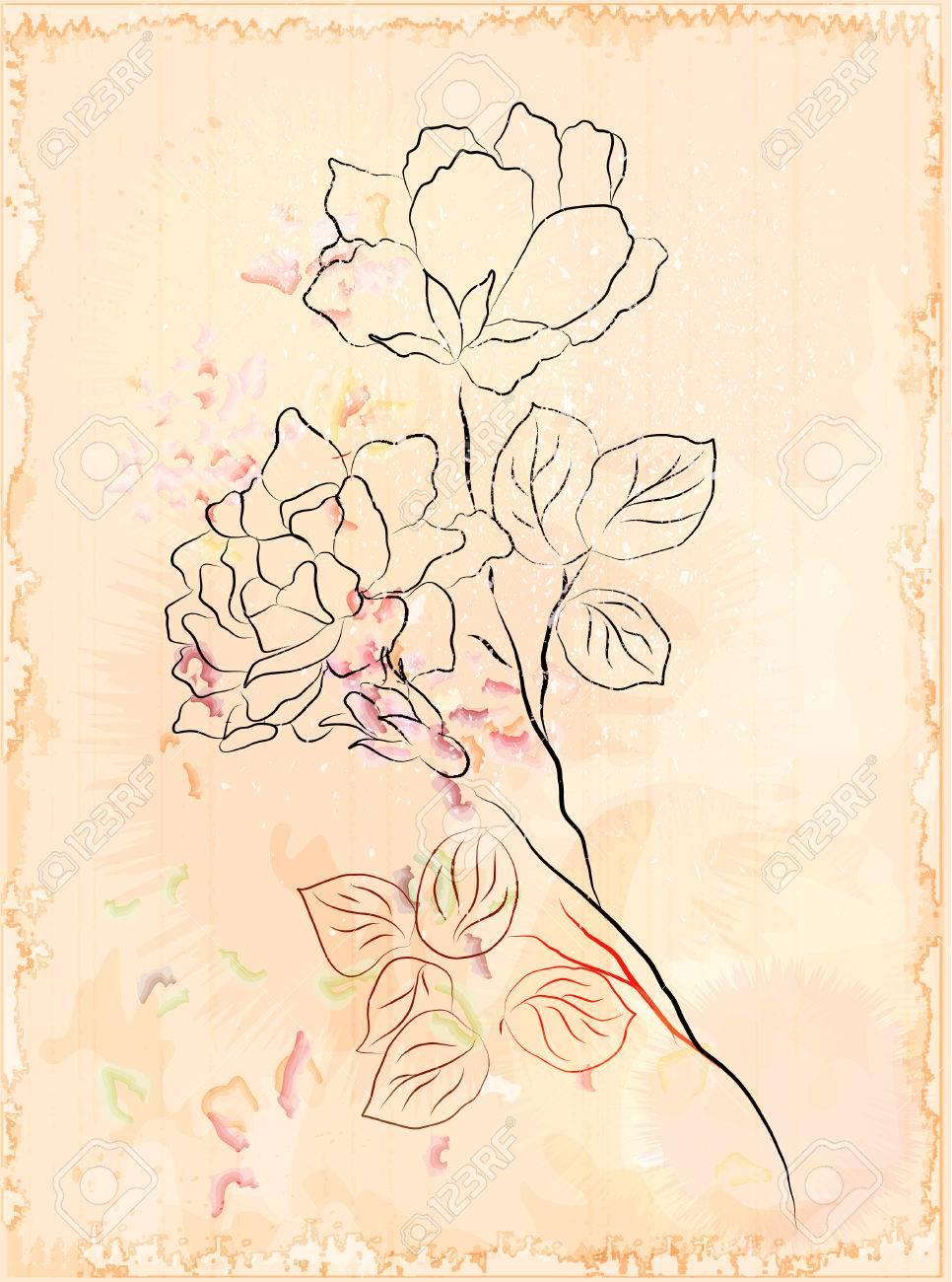 vintage sketch Stock Vector - 7097053