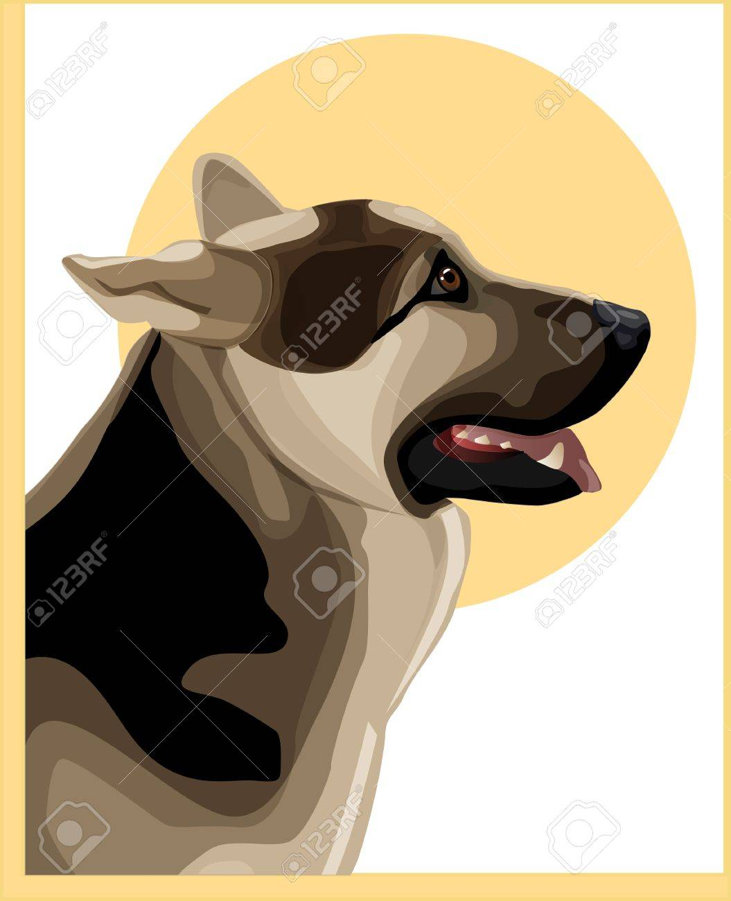 portrait of alsatian shepherd Stock Vector - 7619978